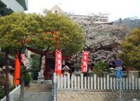 Sinomiya1003280013
