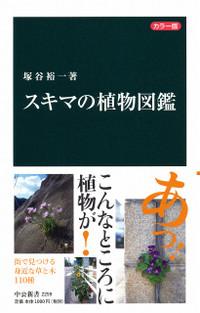 Sukima_syokubutu